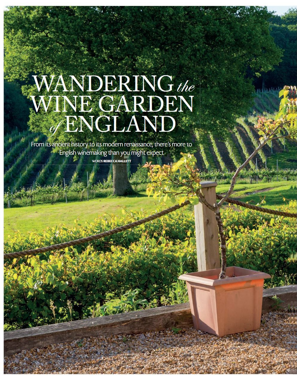 British wine Britain Magazine Rebecca Hallett